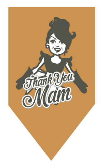 Prestige Foods - Thank You Mam pasta meals
